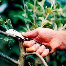 Ножи прививочные Fiskars